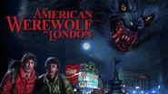 EUROPESE OMROEP | An American Werewolf In London