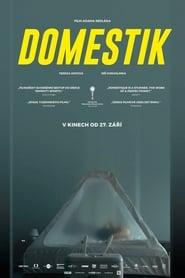 Domestique