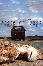 State of Dogs - Hundeleben