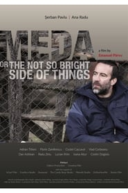 Meda, czyli nieco ciemniejsza strona życia / Meda or The Not So Bright Side of Things (2017)