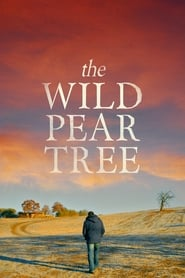 Poster for The Wild Pear Tree