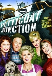 Petticoat Junction - Season 2 (1964) poster