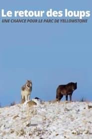 Le retour des loups: Une chance pour le parc de Yellowstone