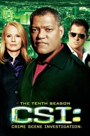 CSI: Crime Scene Investigation Season 10