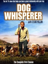 Dog Whisperer: Season 1