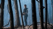 Marvel's The Punisher en streaming