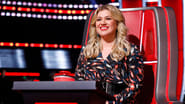 The Voice Season 17 Episode 3 : The Blind Auditions, Part 3