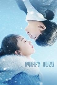Puppy Love 2017