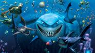 Le Monde de Nemo images