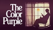EUROPESE OMROEP | The Color Purple
