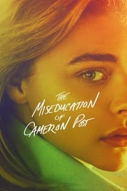 The Miseducation of Cameron Post (2018) 720p WEB-DL 850MB Ganool
