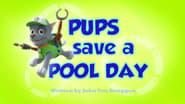 La Patrulla salva la piscina