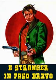 Uno straniero a Paso Bravo 1968