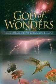 God of Wonders (2008)