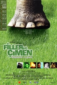 Elephants and Grass (2001) Online Cały Film Zalukaj Cda