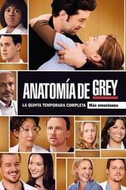 Anatomía según Grey: Temporada 5