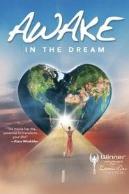 Awake - Ein Reiseführer ins Erwachen 2013