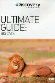The Ultimate Guide: Big Cats