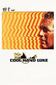 Poster Cool Hand Luke 1967