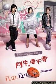 Bull Fighting (2007)