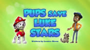 Pups Save Luke Stars