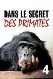 Dans le secret des primates (2020)