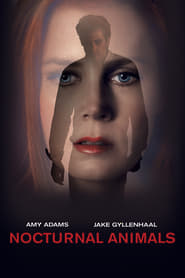 Gucke Nocturnal Animals
