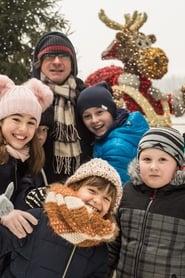 Prázdniny: Vánoční dobrodružství