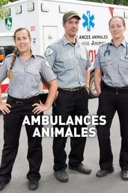 Ambulances animales 2016