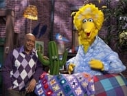 What's in Big Bird's Nest?