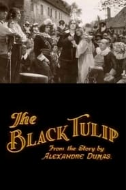 De zwarte tulp 1921