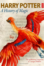 Harry Potter - A History Of Magic en streaming