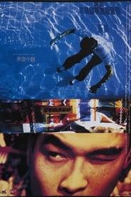 天空小說 1995