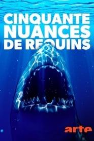 Cinquante nuances de requins 2021