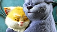 EUROPESE OMROEP | Cats: op zoek naar Kattopia