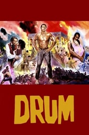 Poster of Drum