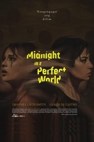 Watch Midnight in a Perfect World (2020)