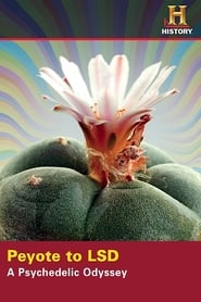 Peyote to LSD: A Psychedelic Odyssey