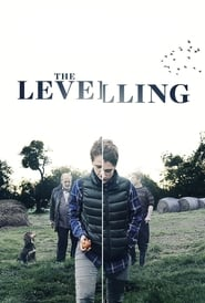 The Levelling Legendado Online