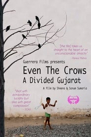 Even the Crows: A Divided Gujarat 2014