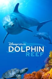 Poster Dolphin Reef