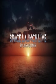Space Launch Live: Splashdown (2020)