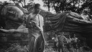 La harpe de Birmanie en streaming