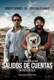 Todo Un Parto Película Completa HD 720p [MEGA] [LATINO] 2010