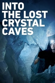 Into the Lost Crystal Caves 2010