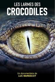 Les larmes des crocodiles