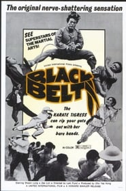 Black Belt 1973