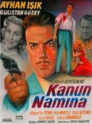 In the Name of the Law poster