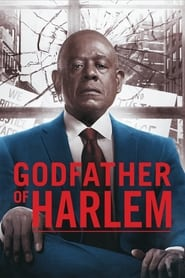 Godfather of Harlem - Season 2 (2021) poster