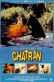 Regarder Les aventures de Chatran